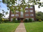 Thumbnail to rent in Clifden Road, Twickenham