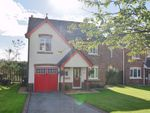Thumbnail to rent in Laurel Bank, Whitehaven