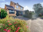 Thumbnail for sale in Borley Crescent, Bury St. Edmunds