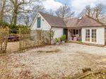 Thumbnail for sale in Brightling Road, Robertsbridge, East Sussex
