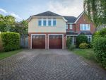 Thumbnail for sale in Clarke Close, Palgrave, Diss
