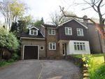 Thumbnail to rent in Shackstead Lane, Godalming