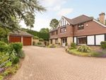Thumbnail to rent in Claremount Gardens, Epsom