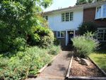 Thumbnail to rent in Cumberland Avenue, Guildford