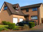 Thumbnail to rent in Cherry Tree Drive, Lanark