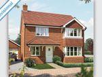 "Thumbnail to rent in ""The Canterbury"" at Hadham Road, Bishop's Stortford"