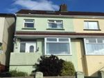 Thumbnail to rent in Horace Road, Torquay