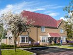 "Thumbnail to rent in ""The Hazel"" at Wren Drive, Finberry, Ashford"
