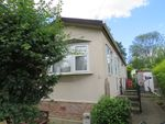 Thumbnail for sale in Bakers Lane, West Hanningfield, Chelmsford