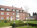 Thumbnail to rent in Avian Avenue, Curo Park, Frogmore, St.Albans