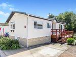 Thumbnail to rent in Alder Avenue, Nidderdale Lodge Park, Knaresborough, North Yorkshire