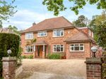 Thumbnail for sale in Park Avenue, Camberley, Surrey