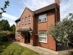 Thumbnail for sale in Millers Way, Grange Park, Northampton