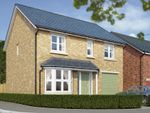 "Thumbnail to rent in ""The Rosebury"" at High Gill Road, Nunthorpe, Middlesbrough"
