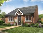 "Thumbnail to rent in ""Felbrigg"" at Lynn Lane, Great Massingham, King's Lynn"