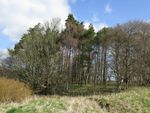 Thumbnail for sale in Lands Of Cleghorn Farm, South Lanarkshire
