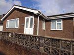 Thumbnail to rent in Pwllhobi, Aberystwyth, Ceredigion