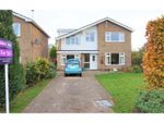 Thumbnail for sale in Hatt Close, Moulton, Spalding