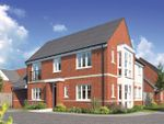 Thumbnail for sale in Show Home, The Ilchester At St.John's, Chelmsford