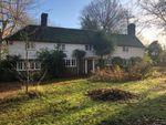 Thumbnail for sale in Wittersham Road, Peasmarsh, Rye, East Sussex