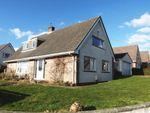 Thumbnail to rent in Springfield Avenue, Elburton, Plymouth