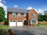 "Thumbnail to rent in ""Melton"" at Moorfields, Willaston, Nantwich"