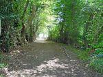 Thumbnail for sale in Kingsbank Lane, Beckley, Rye, East Sussex