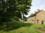 Thumbnail for sale in Felbrigg Walk, West Raynham