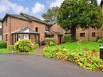 Thumbnail to rent in Greenwood Gardens, Caterham, Surrey