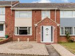 Thumbnail for sale in Hall Rise, Witham, Essex