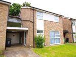 Thumbnail to rent in Sidford Close, Hemel Hempstead