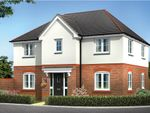 "Thumbnail to rent in ""Brandon"" at Chester Lane, Saighton, Chester"