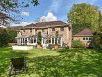 Thumbnail to rent in Langton Place, Charlton Kings, Cheltenham
