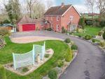 Thumbnail for sale in Quaker Lane, Bardwell, Bury St. Edmunds