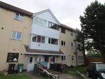 Thumbnail to rent in Wynyard Mews, Hartlepool