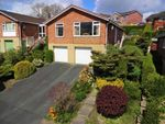 Thumbnail to rent in 9, Bryn Close, Newtown, Powys