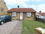 Thumbnail to rent in Cross Road, Walmer