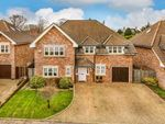 Thumbnail for sale in Bolle Road, Alton, Hampshire