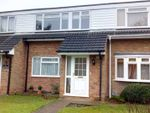 Thumbnail for sale in Perry Green, Hemel Hempstead