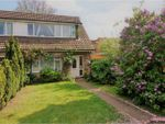 Thumbnail for sale in Dorset Gardens, Stanford-Le-Hope