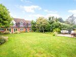 Thumbnail to rent in Gascoigne Lane, Ropley, Alresford, Hampshire