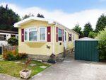 Thumbnail to rent in Worthing Road, Rustington, Littlehampton