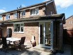 Thumbnail for sale in Manor Lea Close, Milford, Godalming