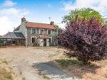 Thumbnail to rent in White Road, Methwold, Thetford