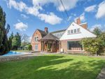 Thumbnail for sale in Whitehill, Ware, Hertfordshire