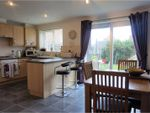 Thumbnail for sale in Mackley Close, South Shields