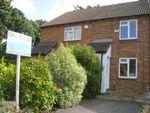 Thumbnail to rent in Bailey Close, Littlehampton