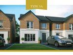 Thumbnail to rent in Lynn Hall Park, Rathgael Road, Bangor