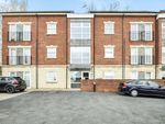 Thumbnail to rent in Holywell Heights, Sheffield