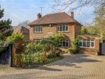 Thumbnail for sale in Bells Yew Green, Tunbridge Wells